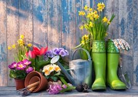En plein coeur de l'été : profitez au mieux de votre jardin !