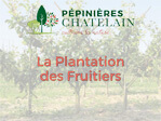 Guide de plantation des fruitiers