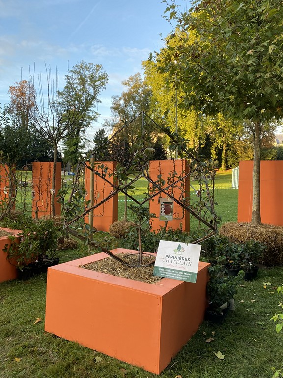 Les Pépinières Chatelain doublement primées aux Journées des plantes de Chantilly