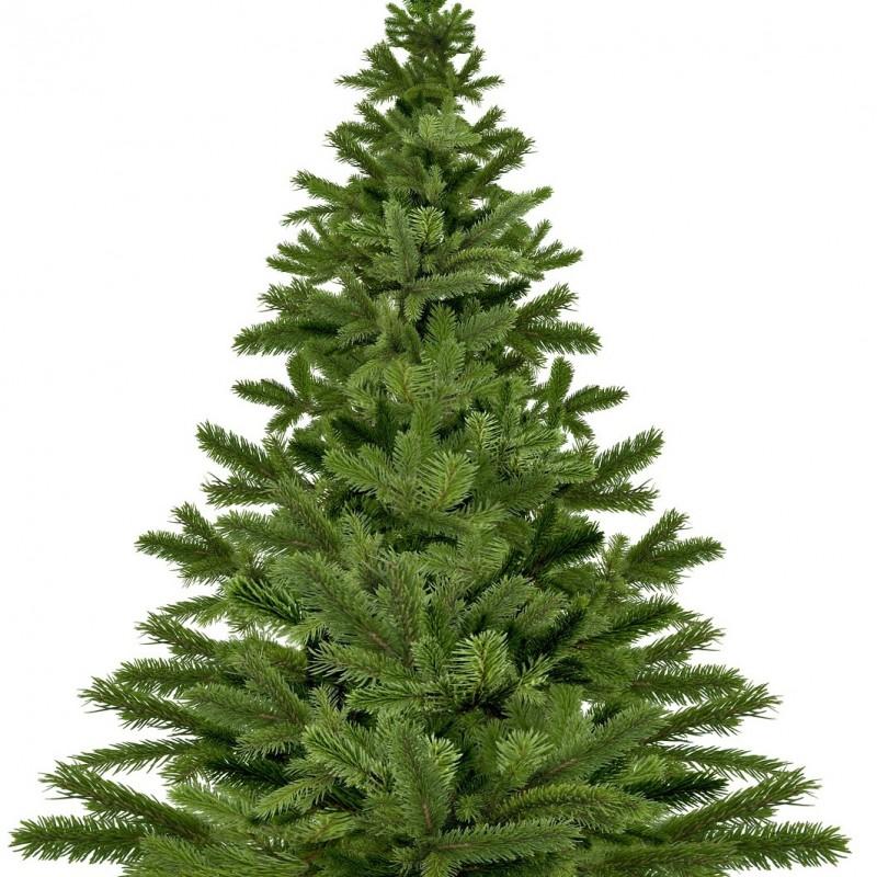 Vente en ligne de Sapin de Noël NORDMANN coupé Disponible en jardinerie uniquement 0