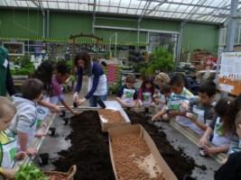Nos animations en jardinerie