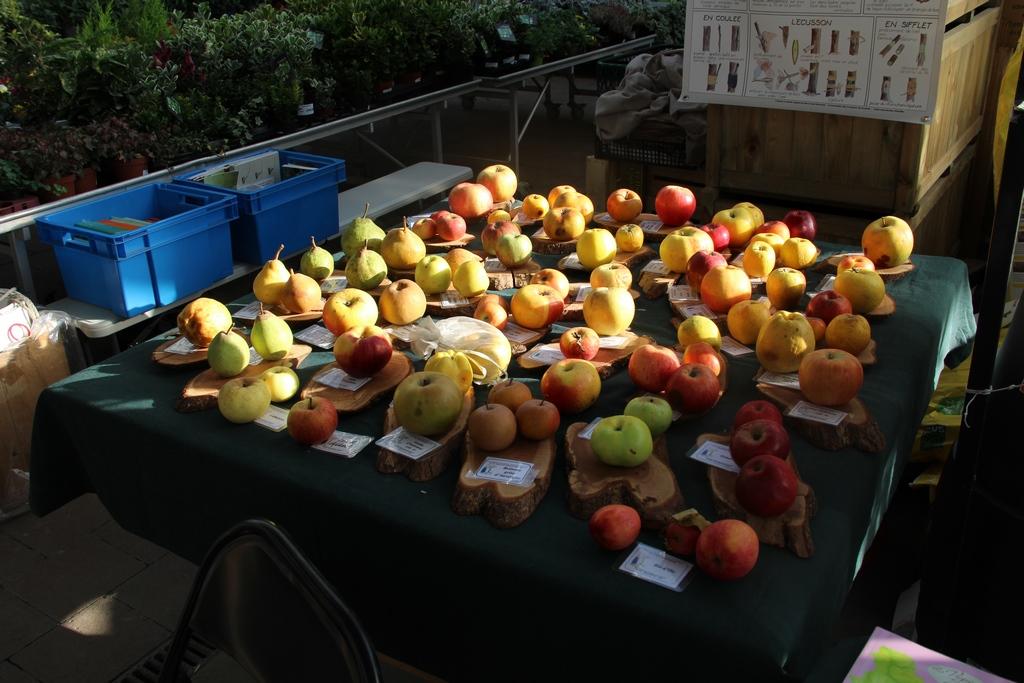 Fete des fruitiers