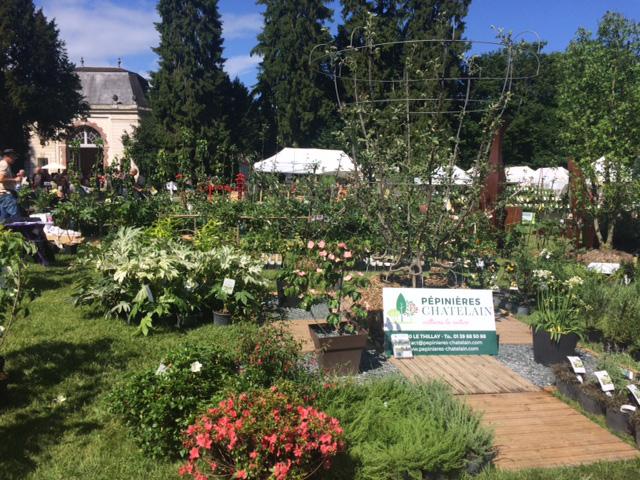 Pépinières Chatelain - abbaye de chaalis - journées de la rose